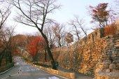 strada vaga in Corea del sud