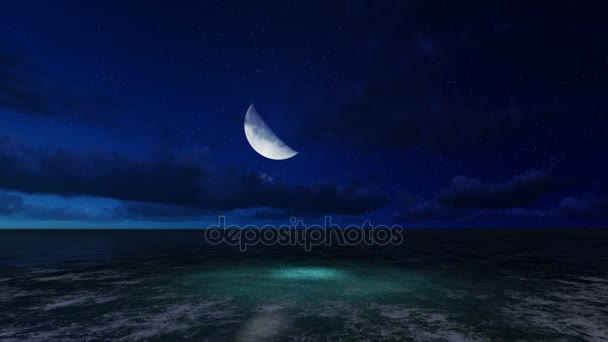 scene of moonlit night on a sea