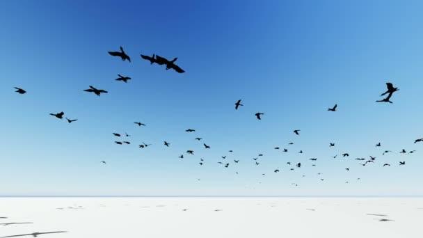 Flying Bird Animation Stock Videos Royalty Free Flying Bird Animation Footages Depositphotos