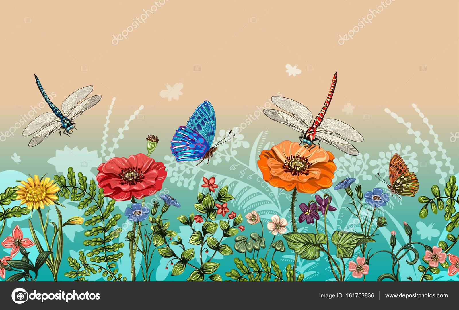 Бабочки стрекозы: картинки и фото стрекозы и цветы, скачать 41