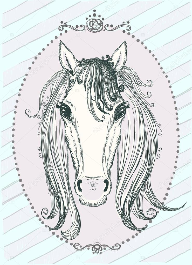 Cute Horse Portrait Graphic Illustration Front View Vintage Style Frame Premium Vector In Adobe Illustrator Ai Ai Format Encapsulated Postscript Eps Eps Format