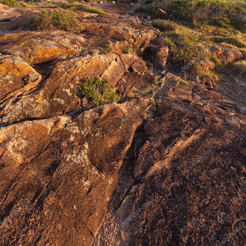 海岸の岩肌 — ストック写真 © wa...