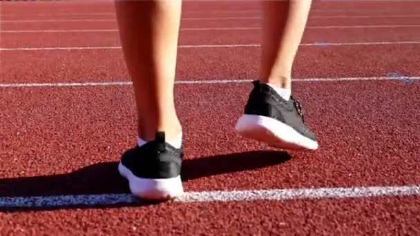 Tracking camera of the legs of a track runner athlete woman running in a line