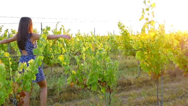 Pretty Young Female Dancing In Vineyard at Sunset, slow motion