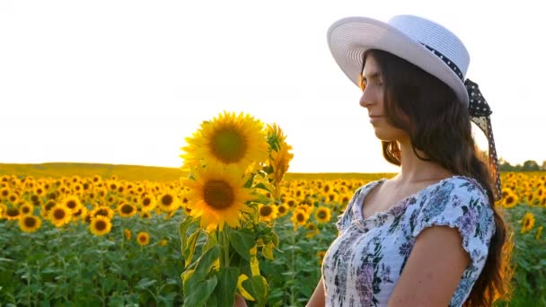 Beautiful happy girl woman smelling sunflowers on sunflower field at sunset