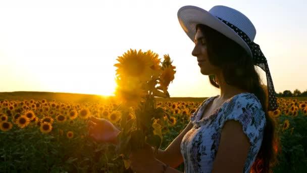 Krásná šťastná dívka žena vonící slunečnice na slunečnicová pole při západu slunce