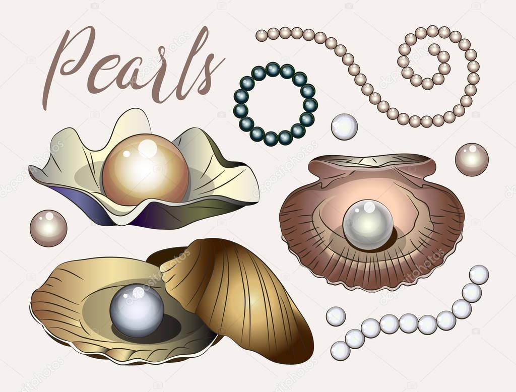 Pearls vector set