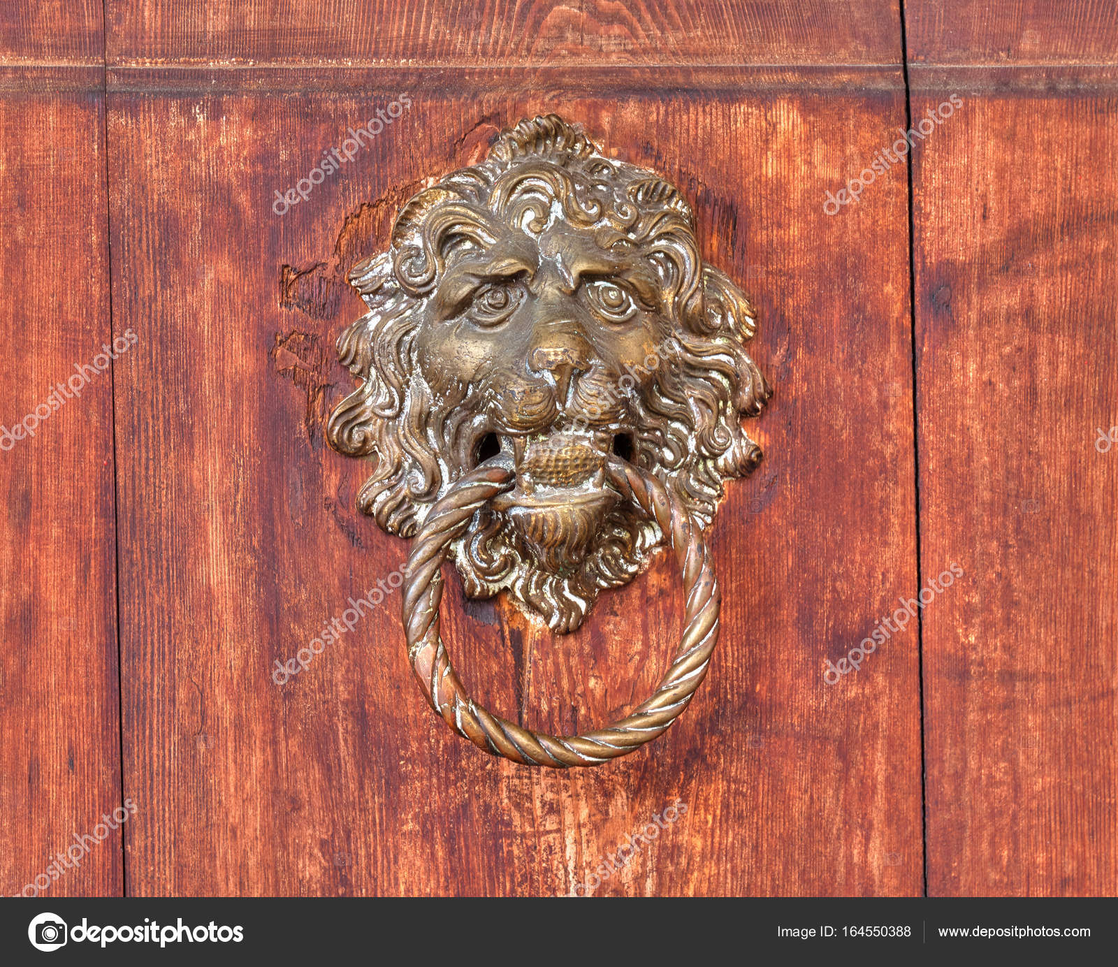 Vintage lion bronze relief outlet on a wooden background ...