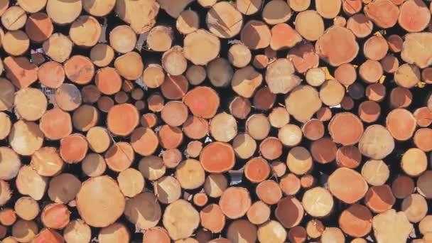 hromada dřeva na topení, kusy dřeva na topení dřeva. Dřevařský průmysl