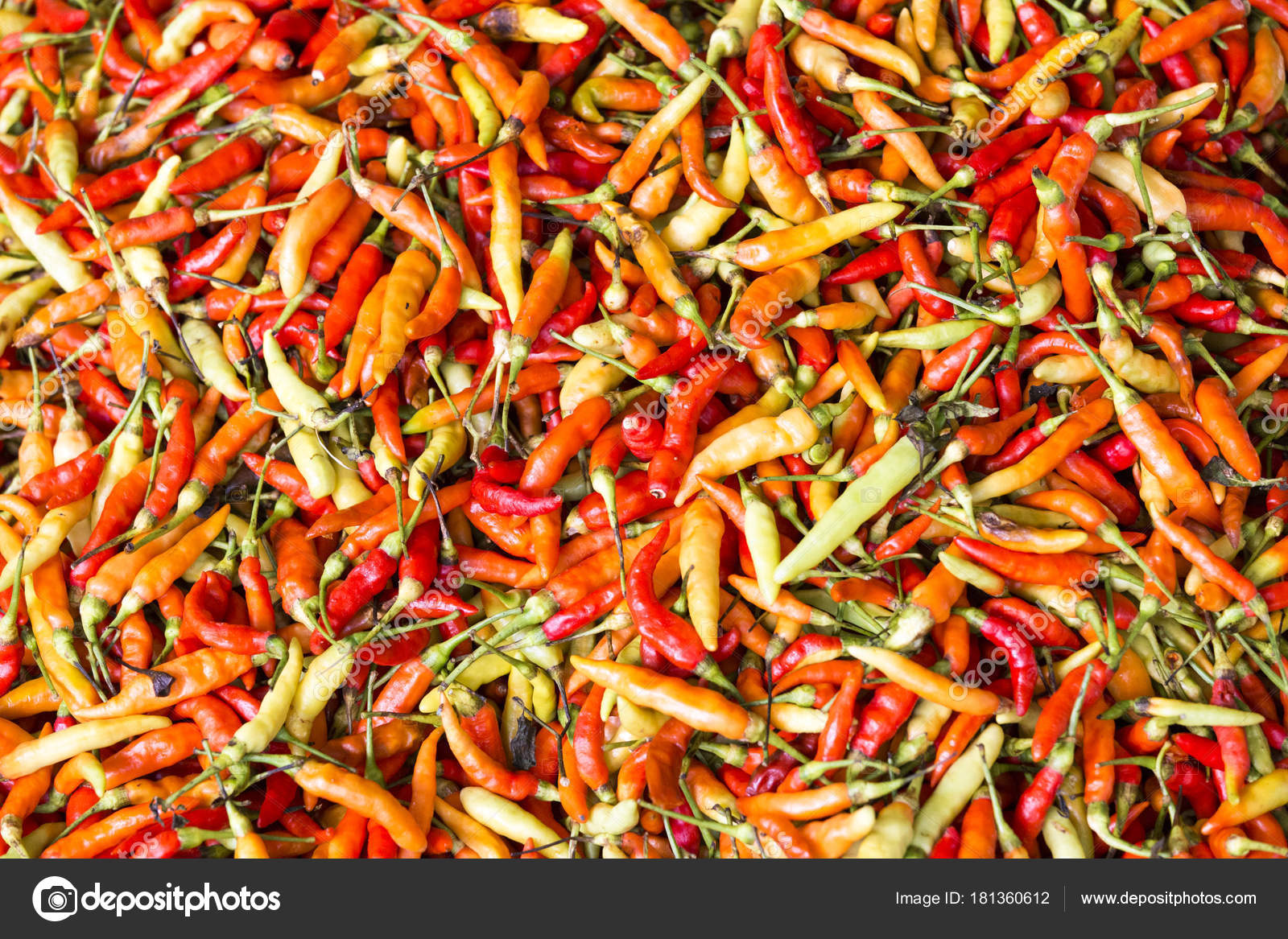 Red Chili Pepper Wallpaper Stock Photo C Mauriziobiso 1 181360612
