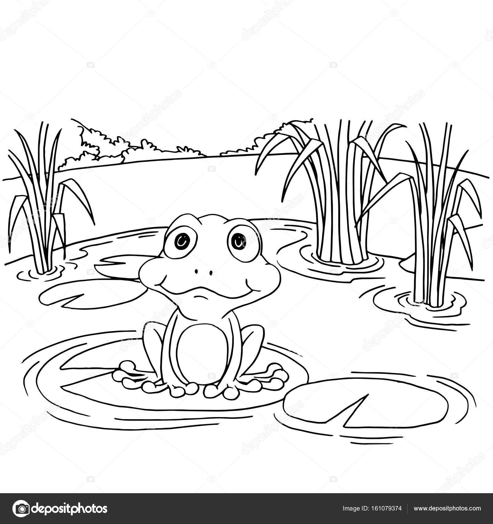Rana de la historieta en nenúfar en lago para colorear vector de ...