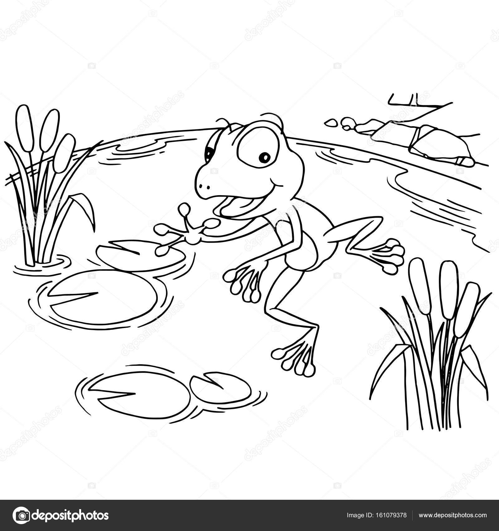 Rana de la historieta en lago para colorear vector de página ...