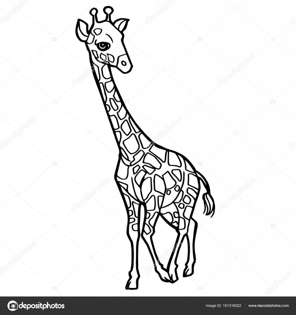 Cartoon Cute Giraffe Coloring Page Vector Stock Vector