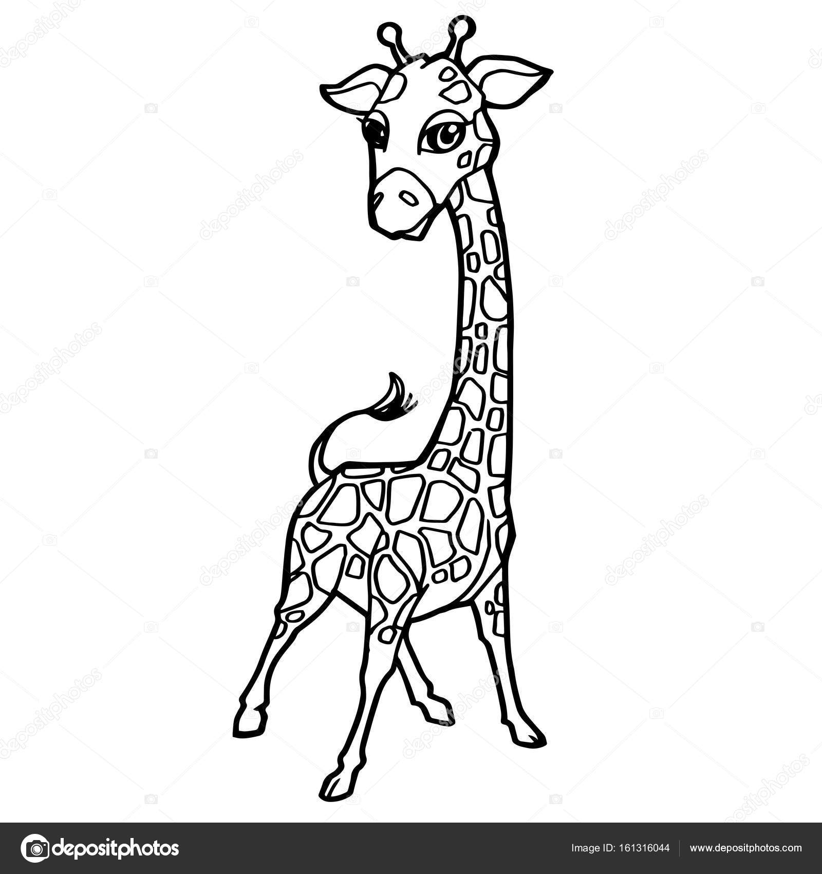 Cartoon Cute Giraffe Coloring Page Vector. U2014 Stock Vector