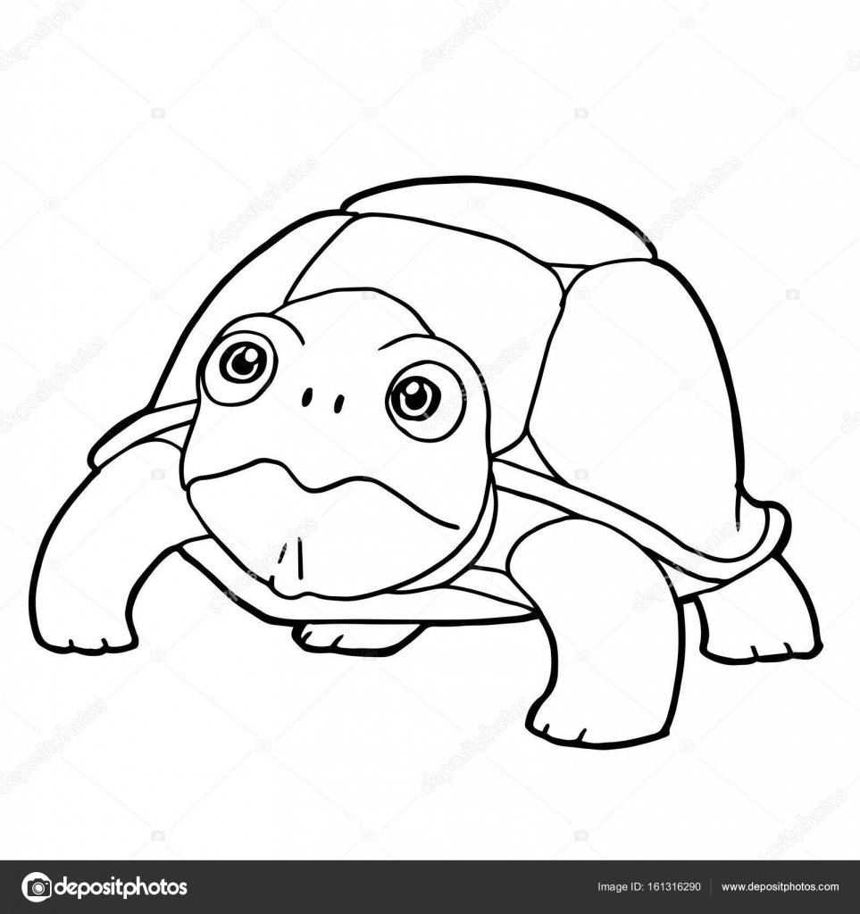 cartoon cute turtle coloring page vector Stock Vector attaphongw