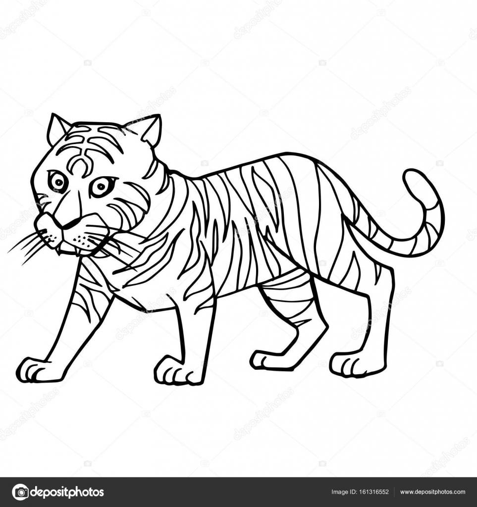 Imágenes Dibujo De Tigre Para Colorear Dibujos Animados Tigre