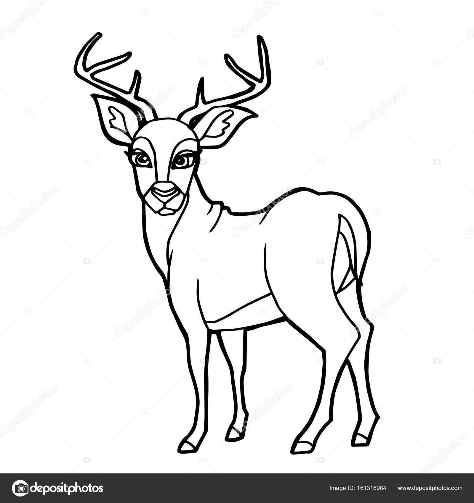 cartoon cute deer coloring page vector — Stock Vector © attaphongw ...
