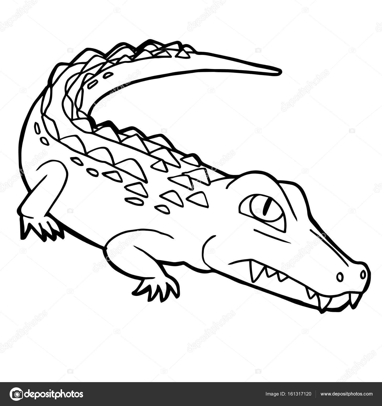 dibujos animados lindo cocodrilo colorear vector de página — Vector ...