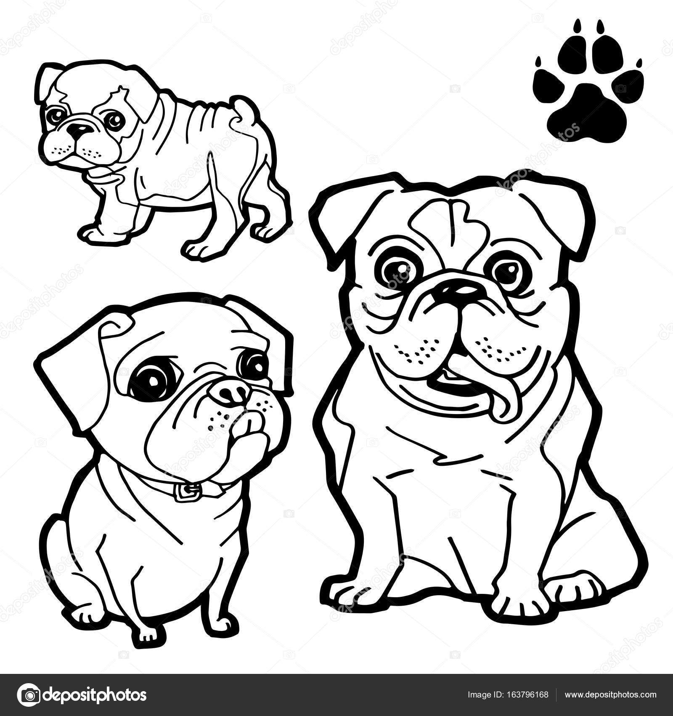 Imágenes Patas De Gatos Para Colorear Pata De Perro Y Perro De