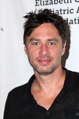 actor Zach Braff