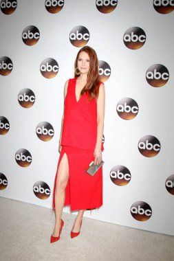 actress Darby Stanchfield