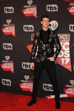 Singer Shawn Mendes
