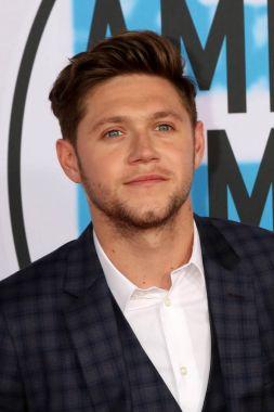 Singer Niall Horan