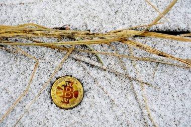 Karlı çimenler ve eski yapraklardan oluşan arka planda bitcoin para