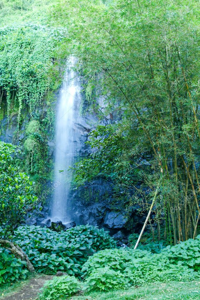 Tropical waterfall of St. Rose