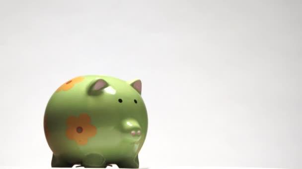 Izolovaný na bílém prasečím břehu se naplní mincemi a bankovkami na budoucí výdaje.