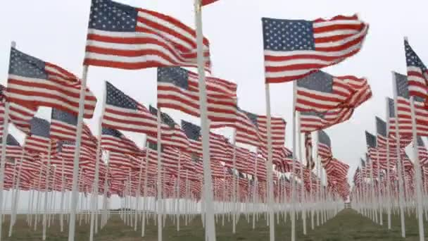 Many United States flags waving in the wind for fallen soldiers memorial.