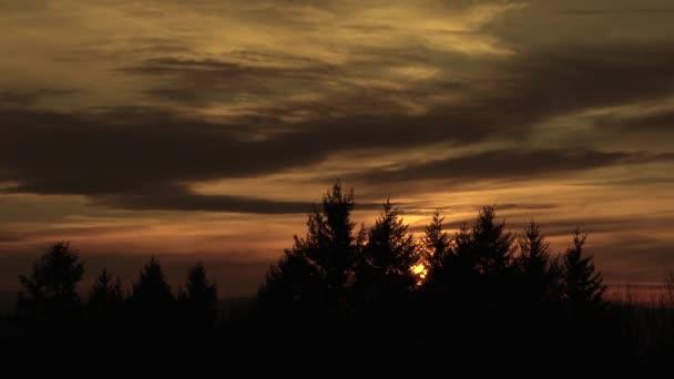 Barevný východ slunce mraky čas vypršel s východem slunce za lesy v Portlandu, Oregon.