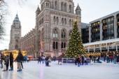 Londýn, Velká Británie - cca ledna, 2018: lidé baví v ledu kroužek s vánoční stromeček vytvořené mimo Natural History Museum v zimní sezóně