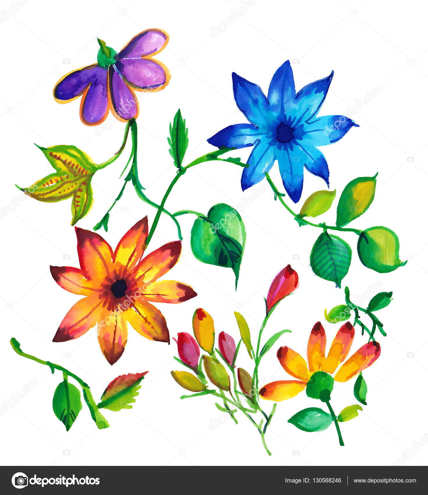 Colorful Watercolor Exclusive Flowers Stock Photo C Devmanoj8729