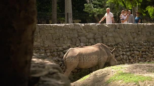 Skupina lidí při pohledu na Rhino jíst trávu v Zoo klec