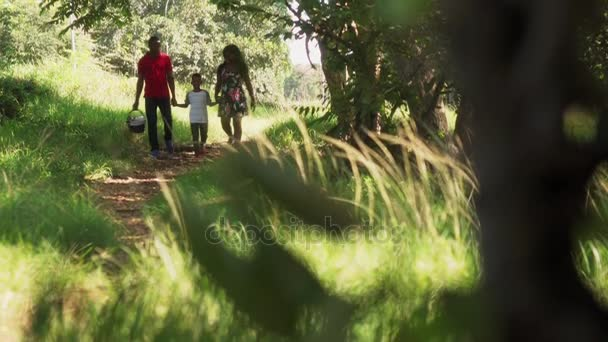 Happy Black Family Walking In City Park With Picnic Basket Stock Footage Couple Son