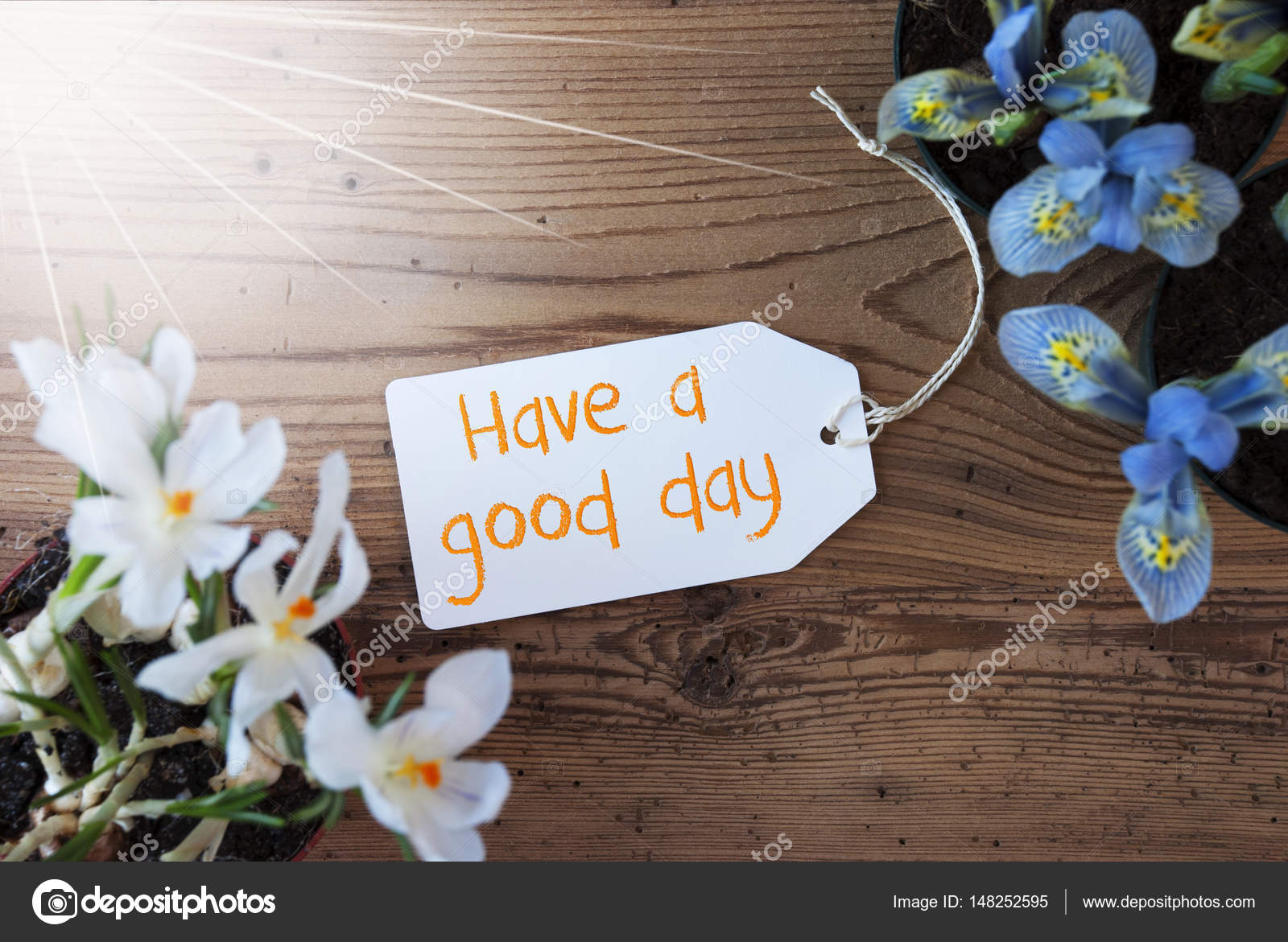 Sunny Flowers Label Quote Have A Good Day Stock Photo