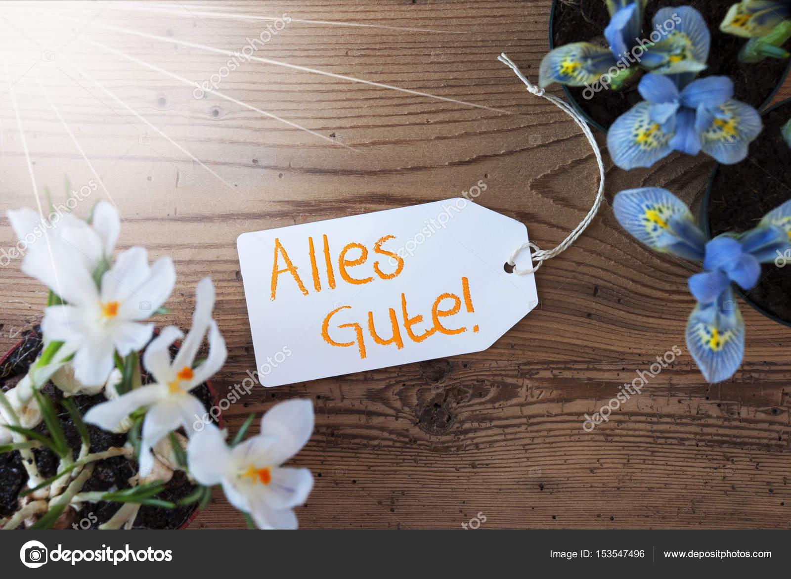 Auguri Matrimonio In Tedesco : Auguri elisa frasi buon compleanno onomastico e congratulazioni