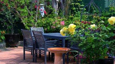 Courtyard garden setting