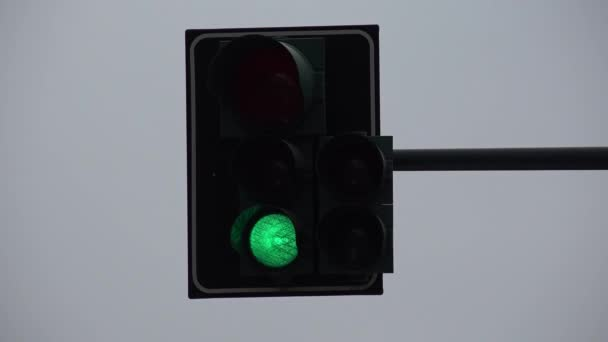 4K Semaphore Stop Cars at Traffic Light Crowd People Pedestrians Drivers Cross
