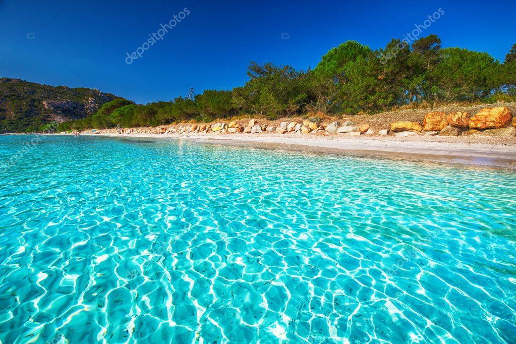 Santa Giulia beach with azure clear water, Corsica, France