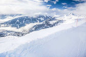 Fotografie Bäumen fallenden Neuschnee in den Tiroler Alpen