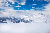 Fotografie Bäumen fallenden Neuschnee in Österreichs Alpen
