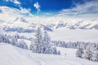 Trees covered by fresh snow in Tyrolian Alps