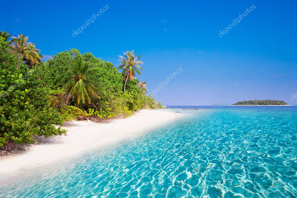 Tropical island with sandy beach and trees