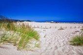 Fotografia Dune di sabbia bianca sulla spiaggia di Su Giudeu