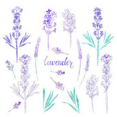 Levandulový květinové prvky