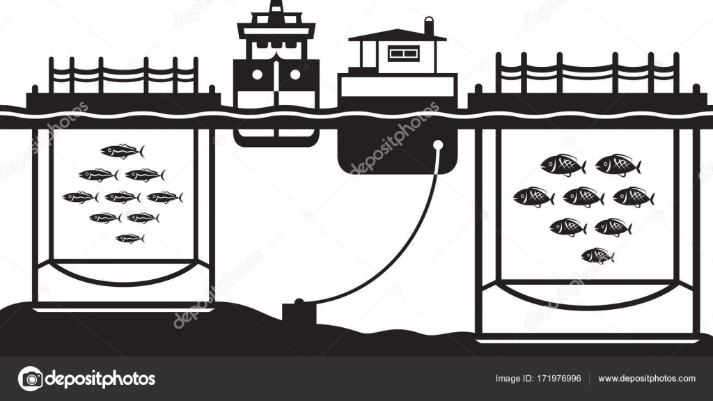 Sea cage fish farming — Stock Vector © angelha #171976996
