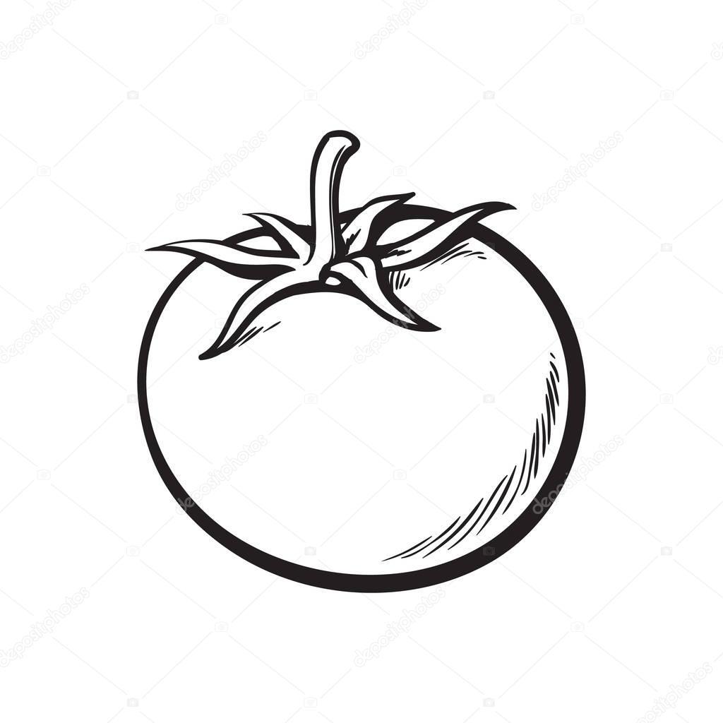 schets stijl tekening glanzende rijpe tomaat
