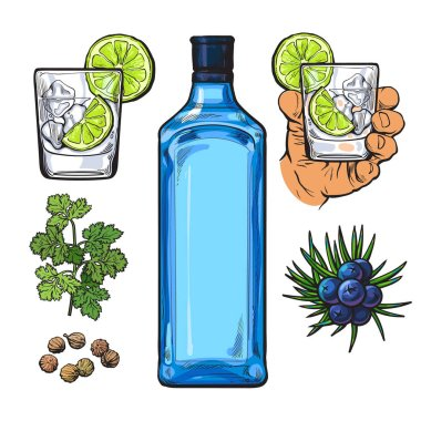 Gin bottle, shot glass with ice and lime, juniper berries